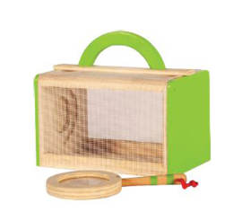 Ensemble de collection d'insectes pour enfants